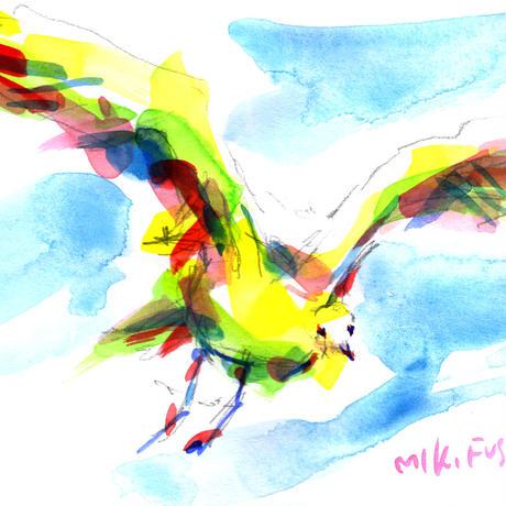 カモメ〈seagull〉