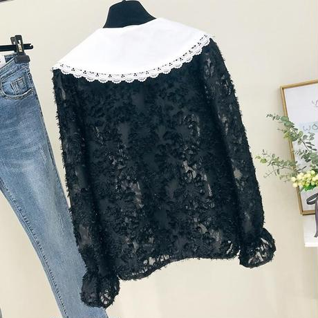 big collar blouse (long)