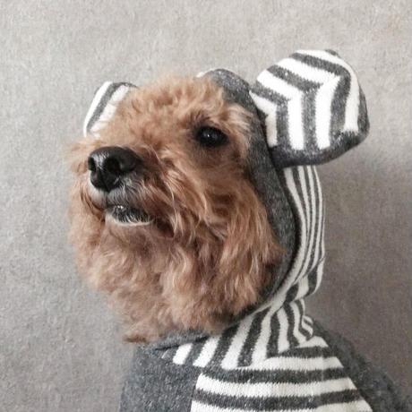 ORIGINAL raglan bear hoodie . [ gray XS , S , M ]