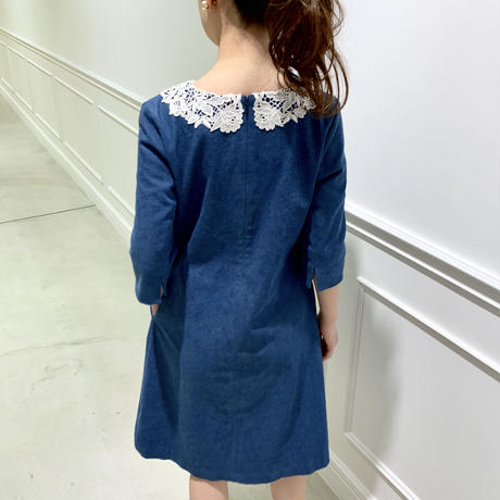 Antique Lace Collar Dress