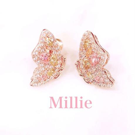 AAAcz  Papillon