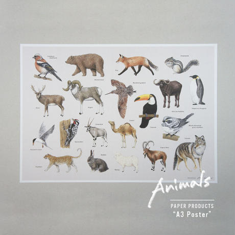 Animals / A3 Poster
