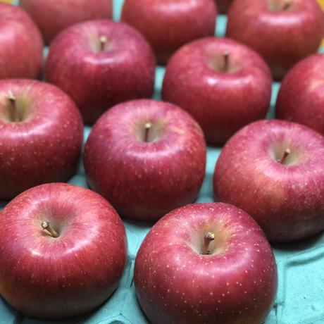 伝統の味 百年りんごのデザートアップル ジャム  5個セット 基本送料無料