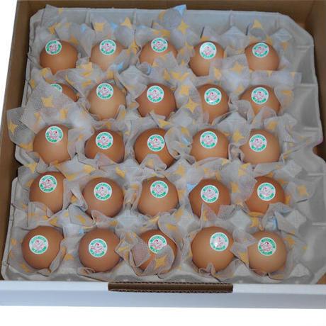 みながわ農場直送 土佐ジロー有精卵25個(白箱)