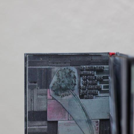 Ame ni mo Makezu letterpress photo book 『雨ニモ負ケズ』活版写真本