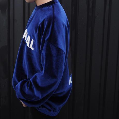 ベロアトレーナー(BLUE)