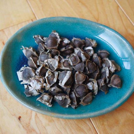 モリンガのチカラ モザンビークのタネ 100粒