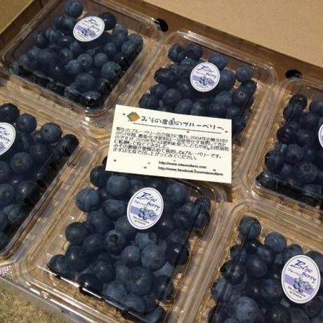 自然栽培ブルーベリー  6P