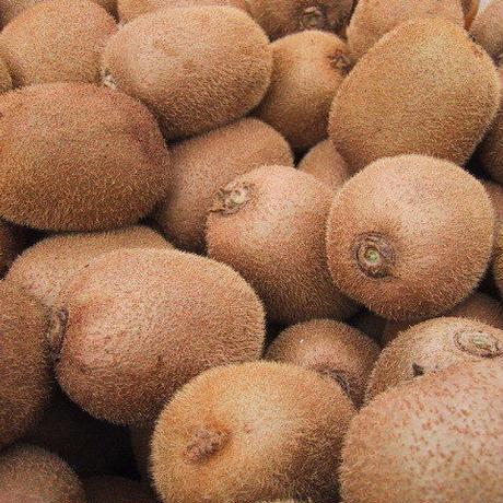 自然栽培キウイフルーツ 5キロ
