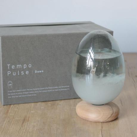 Tempo Pulse Dawn  テンポパルスドーン