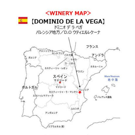 お試しスペインワイン3本セット【ドミニオデラベガ】