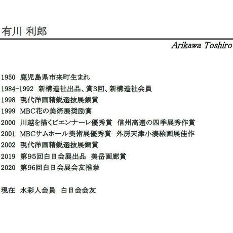 有川利郎「まなざし」32×24cm Arikawa Toshiro