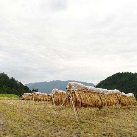 やまひかり《光月~こうづき~》5kg [自然農縁 月とたね] made in 岐阜県