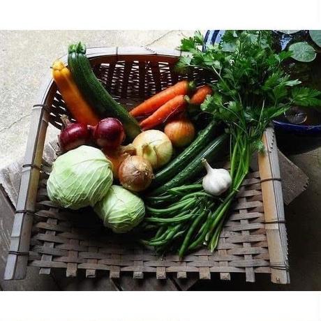 自然農野菜セット [BIG FAMILY FARM]