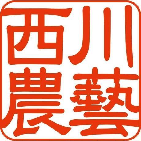 低温圧搾生搾り えごえごまセット【 えごま油×えごま油】[西川農藝] made in 鳥取県