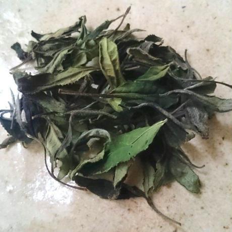 白茶〈新茶〉 [加茂自然農園] made in 京都府
