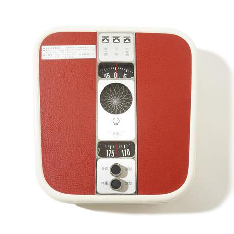 1970's Body Scale 1