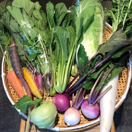 (冷蔵) 宮崎県産季節のお野菜10品と無添加煮干し醤油かけそばのセット