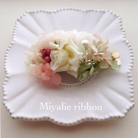 Miyalie clip WC1-5