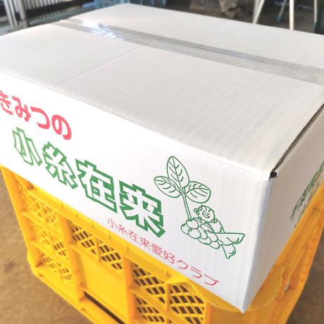 三舟山のにんじん【12kg・送料無料】