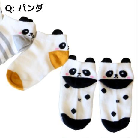 パンダ Socks 5足セット 14-16/ 16-18/ 18-22cm