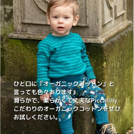 Piccalilly 長袖リブTシャツ ブルーグリーン 116/122/128cm