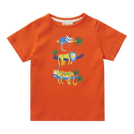 Piccalilly Safari Orange Tシャツ 80/ 86/ 92/ 98cm ※残り80㎝のみ