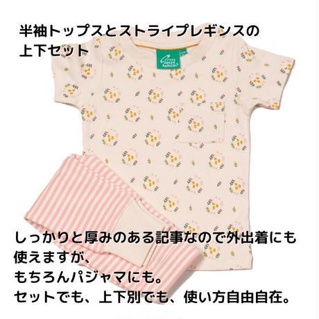 Little Green Radicals フラワー・ストライプ パジャマ/上下セット 86/ 98/ 104/ 110cm