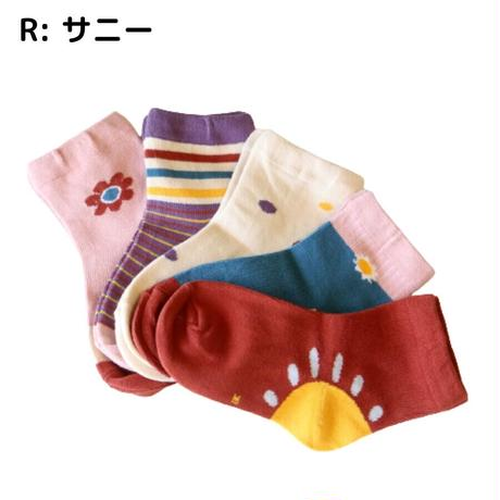 サニー Socks 5足セット 14-16/ 16-18/ 18-22cm