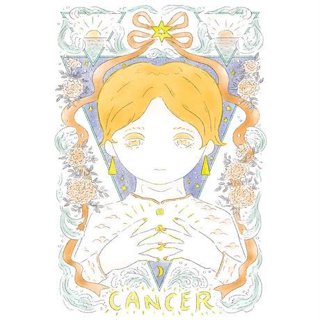 Cancer (蟹座)<額装済>