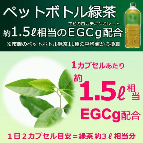 【通常価格】『亜鉛イオノフォア』サプリメント(栄養機能食品)Husam Dabbagh 博士監修/植物ポリフェノール(緑茶カテキン EGCg・ケルセチン)高配合(長野県製造)/メール便
