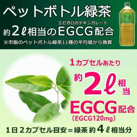 【初回限定価格】亜鉛イオノフォアサプリメント(栄養機能食品)Dabbagh博士監修/緑茶EGCGカテキン・ケルセチン配糖体高配合+ルチン/日本製/メール便