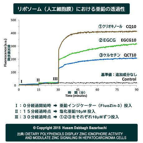 【まとめ買い3個セット】送料無料『亜鉛イオノフォア』サプリメント(栄養機能食品)Dabbagh博士 監修/高純度EGCG+ケルセチン配糖体+ルチン/国内製造/メール便