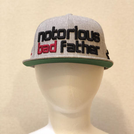 bad father snapback heather grey