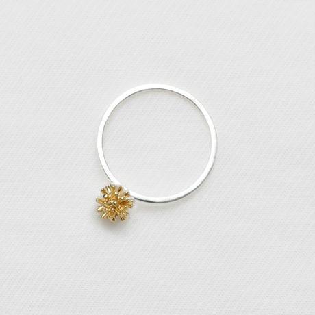 stella Ring [SR-11]