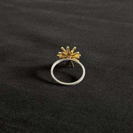 星空 Ring [HR-1]