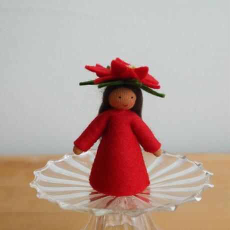 ポインセチア の妖精 ブラウン