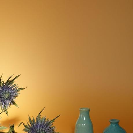 Tiny Vase /Hagi A