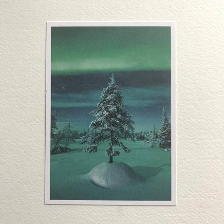 オーロラツリー ポストカード