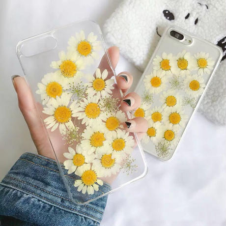 Dry White Dasiy Clear iPhone case