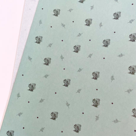 【ゆうパック】50枚 ★ wrapping paper A3 ecureuile
