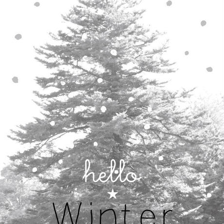 poster B2 ★ hello winter