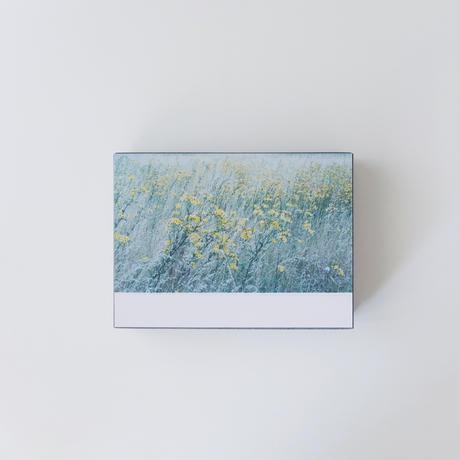 【9月号掲載分】岡崎直哉 POST CARD 100 no.03(限定作品)