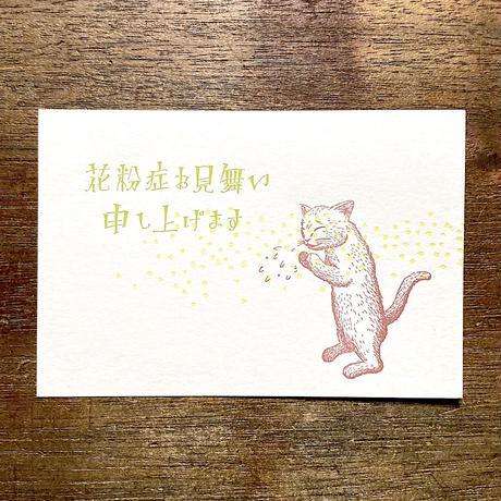 緑青社(つるぎ堂+knoten)|つるぎ堂 猫のポストカードセット