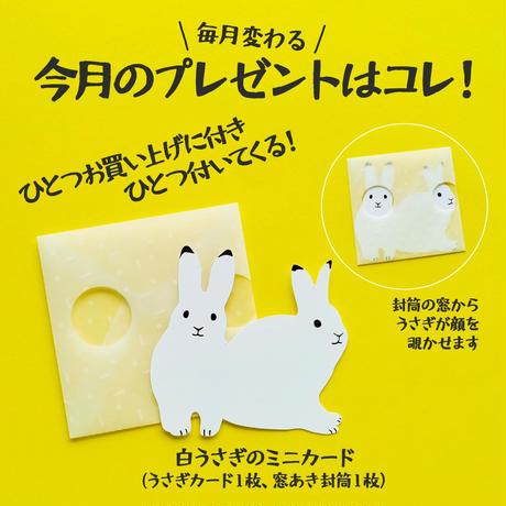 【6月号掲載分】rala design|不動の人気!パンセット