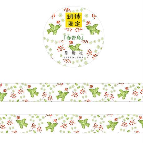 【6月号掲載分】星燈社   マステBOX-紙博限定マステ3柄+アソート3柄セット