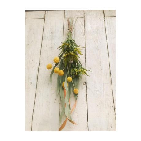 Dryflower:f3|f3セレクション季節のお花セットA