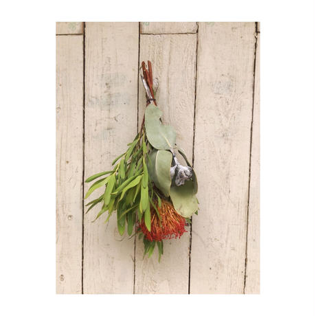 Dryflower:f3|f3セレクション季節のお花セットC