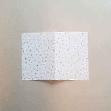 【9月号掲載分】篠塚 朋子|花・満開セット