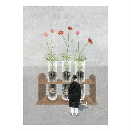 日下 明|giclee print「cosmos」 / 額装